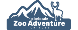 Picnic Cafe Zoo Adventure